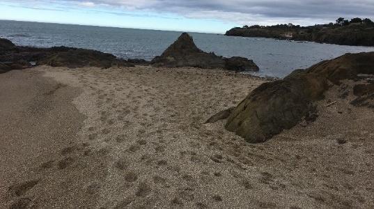 La plage du Racou au cours de l'hiver 2018-2019